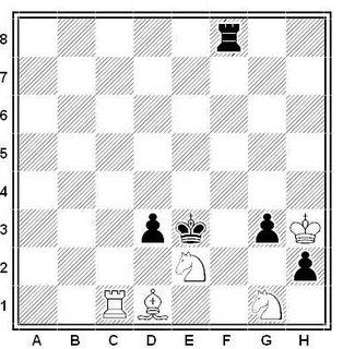 ejercicio-ajedrez-estudio-artistico-0501