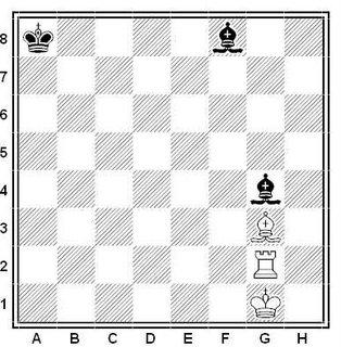 ejercicio-ajedrez-estudio-artistico-0505