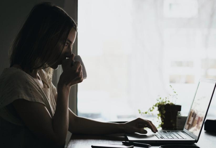 25+ Bolsas de Empleo en Internet