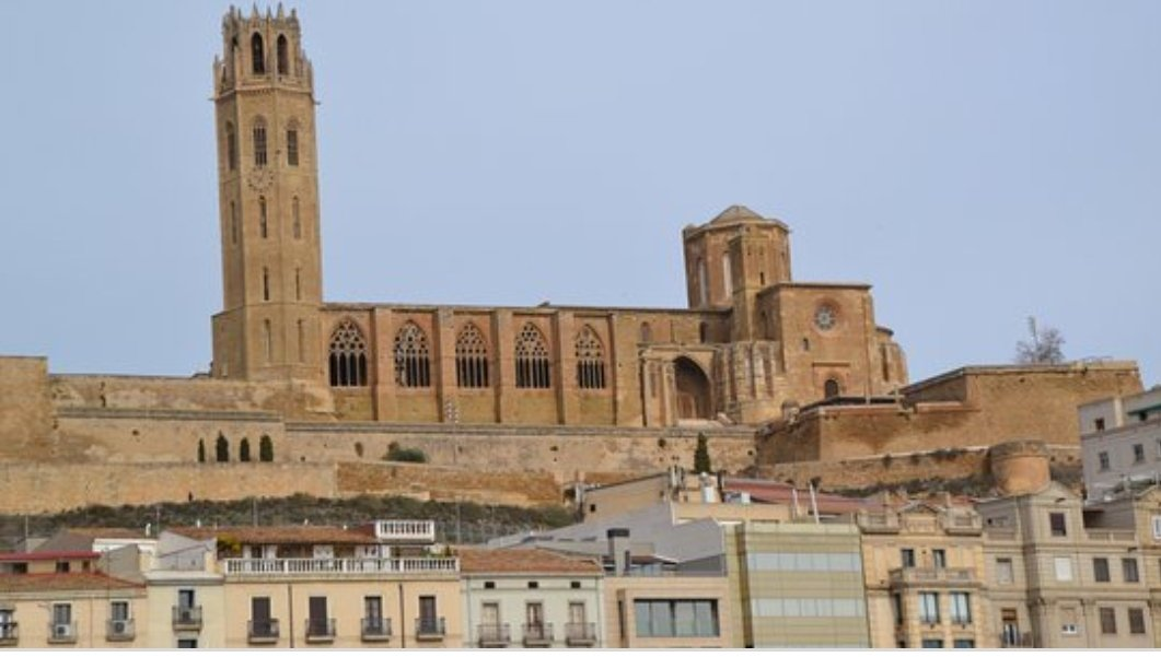 Seu Vella de Lleida de nit